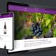 Onlineshop für Mürset Weine Schweiz